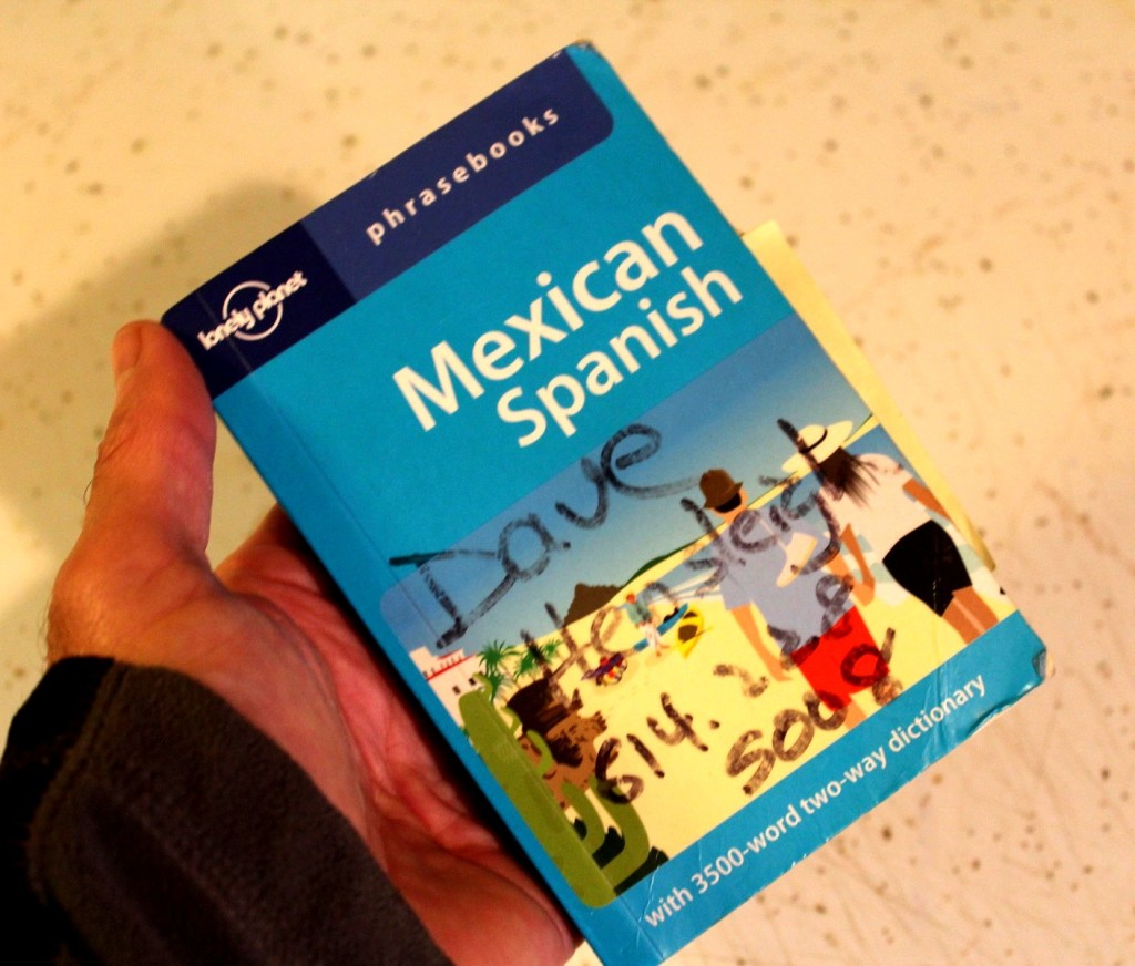 "This Lonely Planet ""Phrasebook"" for Mexican Spanish is the best."
